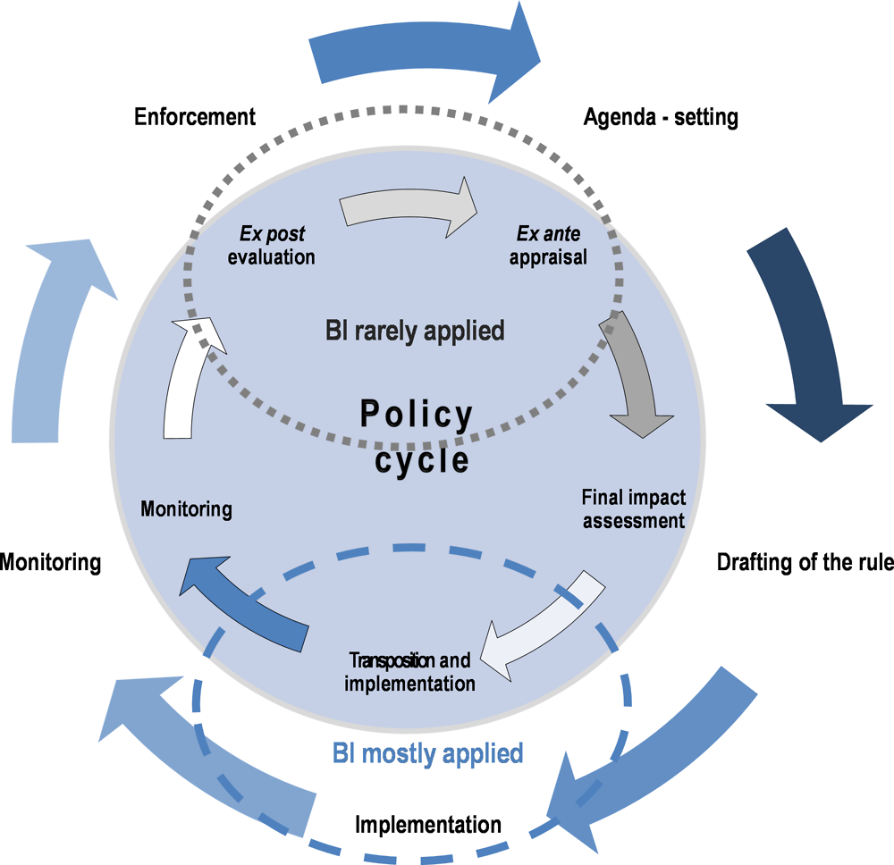 Figure 2.2. The policy cycle