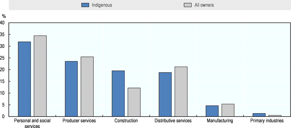 Figure 2.5. Businesses, by sector, Indigenous and non-Indigenous, United States, 2016