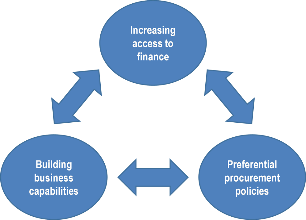 Figure 2.7. Policy levers to support Indigenous entrepreneurship and small businesses in a rural context