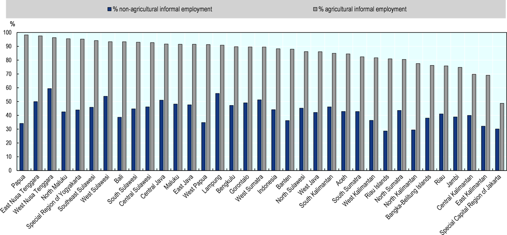 Figure 4.18. Informality in both agriculture and non-agriculture employment is pervasive in rural provinces