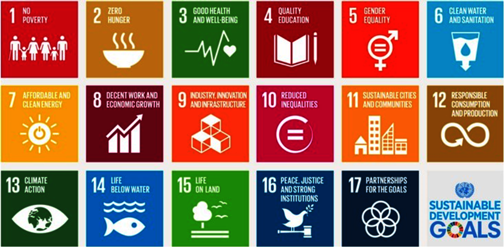 Figure 2.12. The Global Goals for Sustainable Development, 2015-30