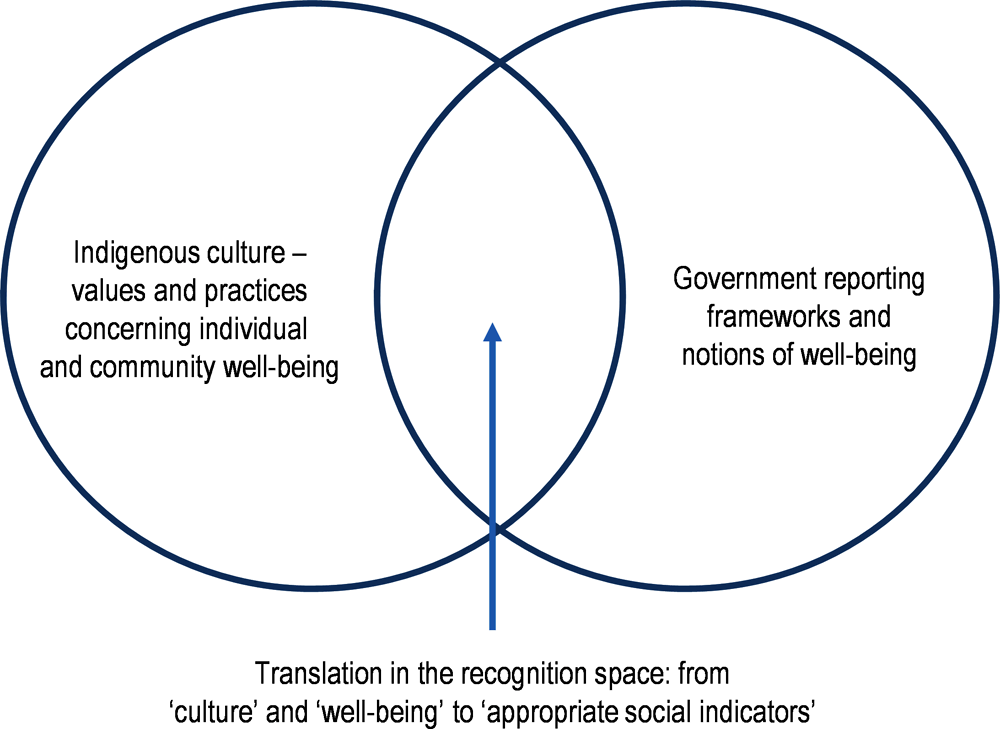 Figure 2.28. The recognition space for indicators of Indigenous well-being
