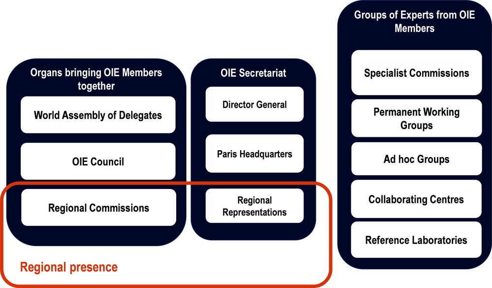 Figure ‎1.2. Organs involved in the conduct of OIE work