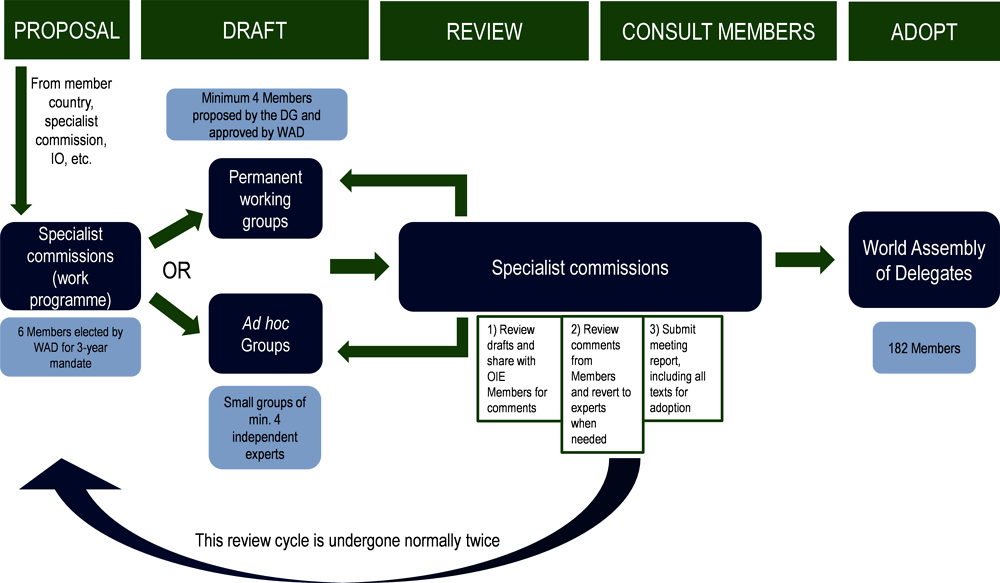 Figure ‎1.4. Yearly standard-setting procedure for OIE Codes and Manuals