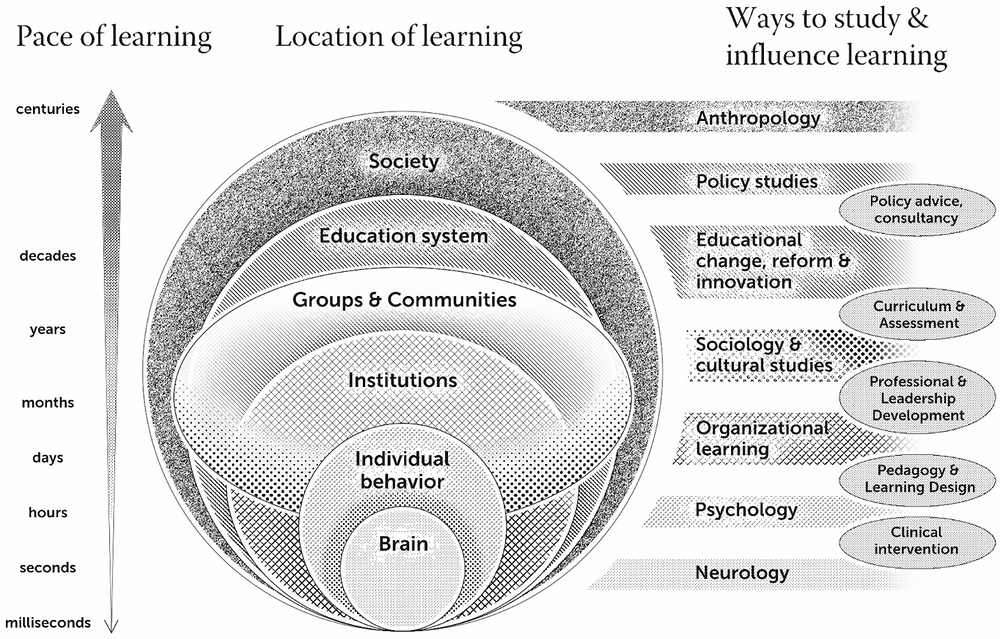 Figure 19.1. A diagrammatic representation of the multilevel hierarchically nested sites of learning and the disciplines that study them at each of these levels