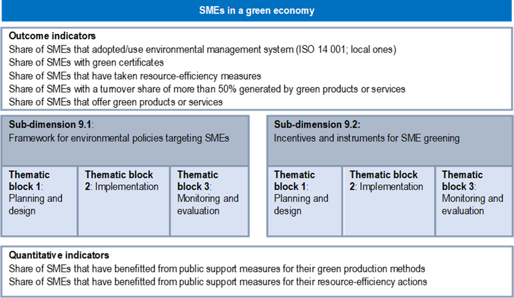 Figure 11.2. Assessment framework for Dimension 9: SMEs in a green economy