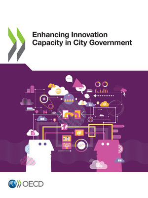 : Enhancing Innovation Capacity in City Government: