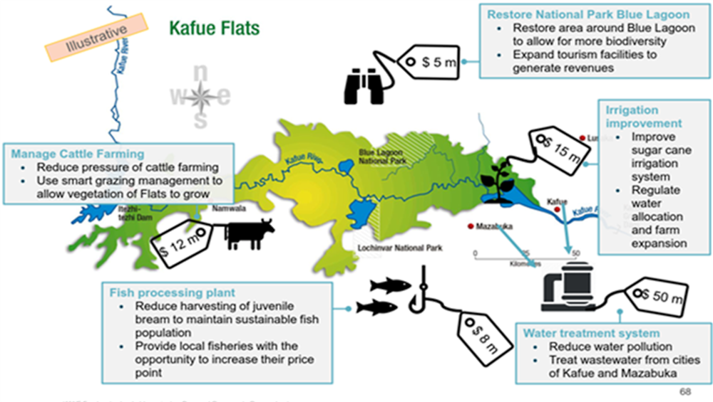 Figure A D.7. Schematic of proposed blended finance projects that will have a net positive impact on the Kafue Flats
