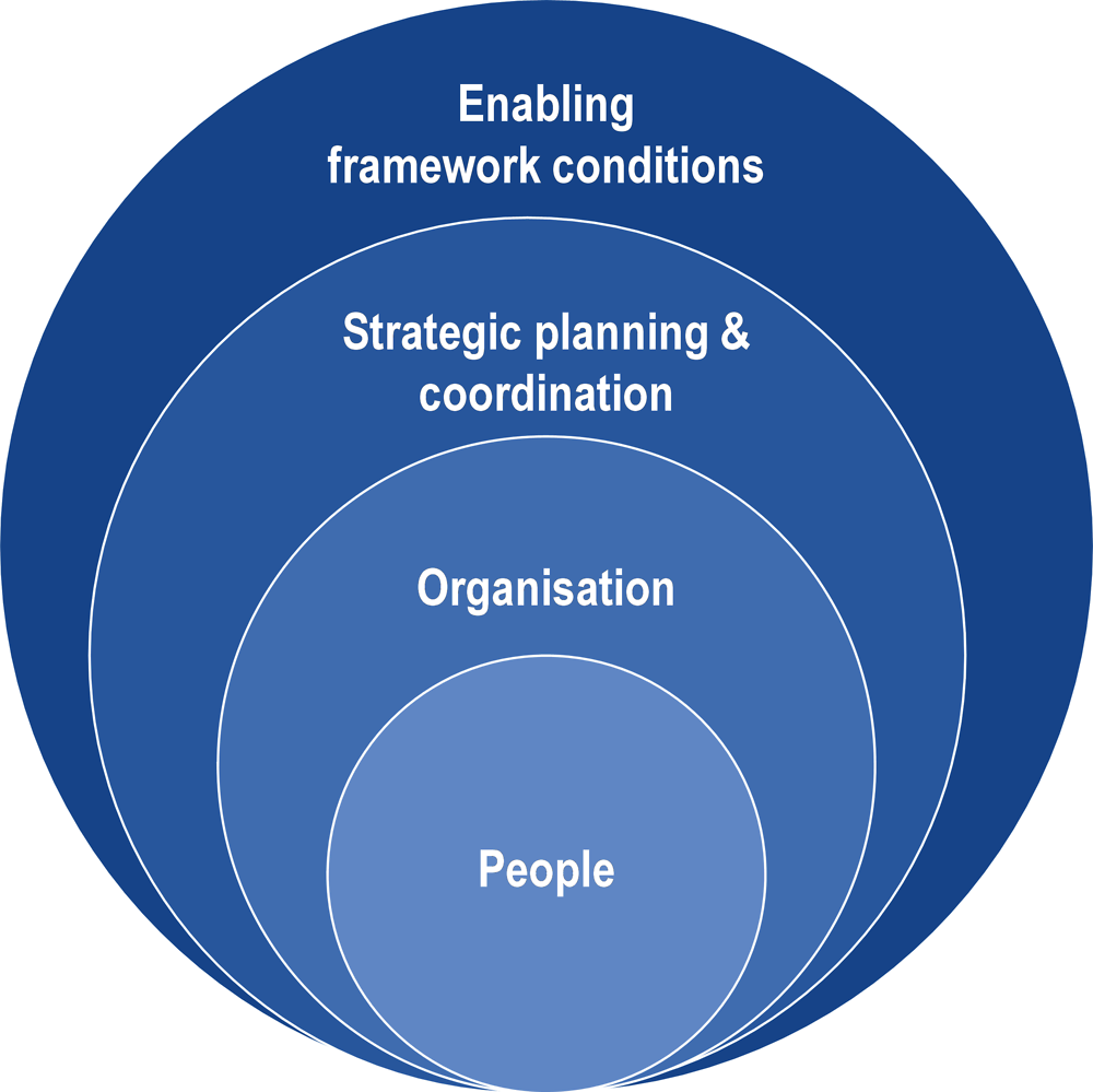 Figure 1.8. OECD Analytical framework for administrative capacity building