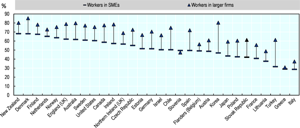 Figure 4.4. Slovak workers in SMEs participate less in adult learning than workers in large firms