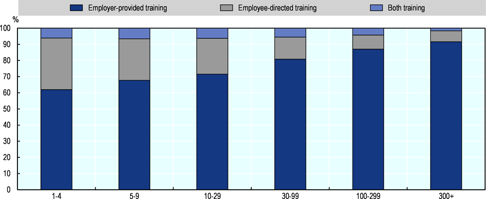 Annex Figure 3.A.1. Share of employer- and/or employee-led training by firm size (2006-15)