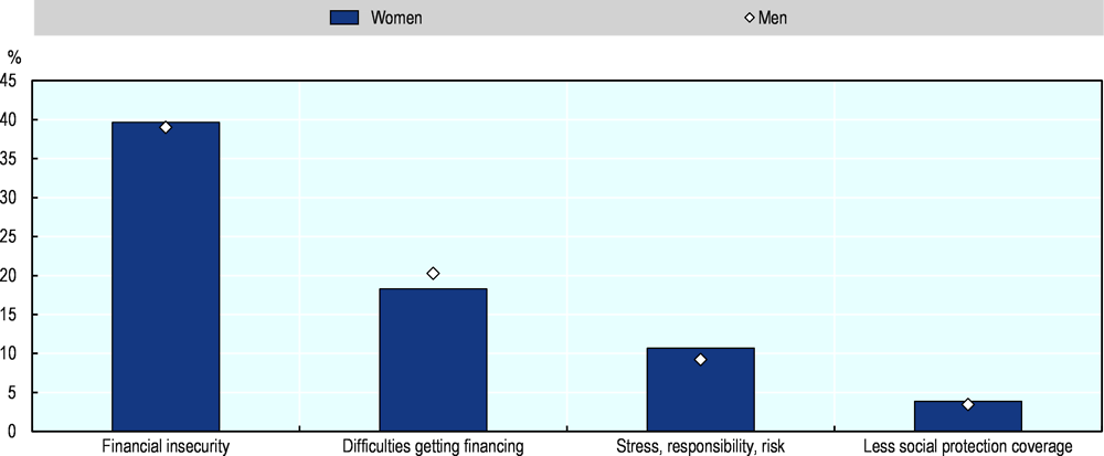 Figure 2.13. Financial insecurity is the main reason that female employees and family workers in the EU are not self-employed