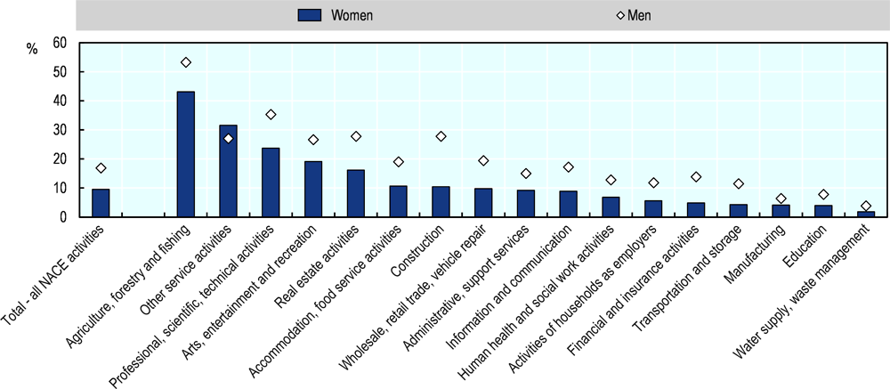 Figure 2.15. Women in the EU are more likely than men to be self-employed in personal service activities