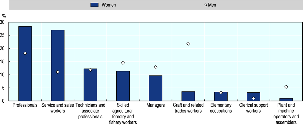 Figure 2.16. More than half of self-employed women in the EU are Professionals or Service and sales workers