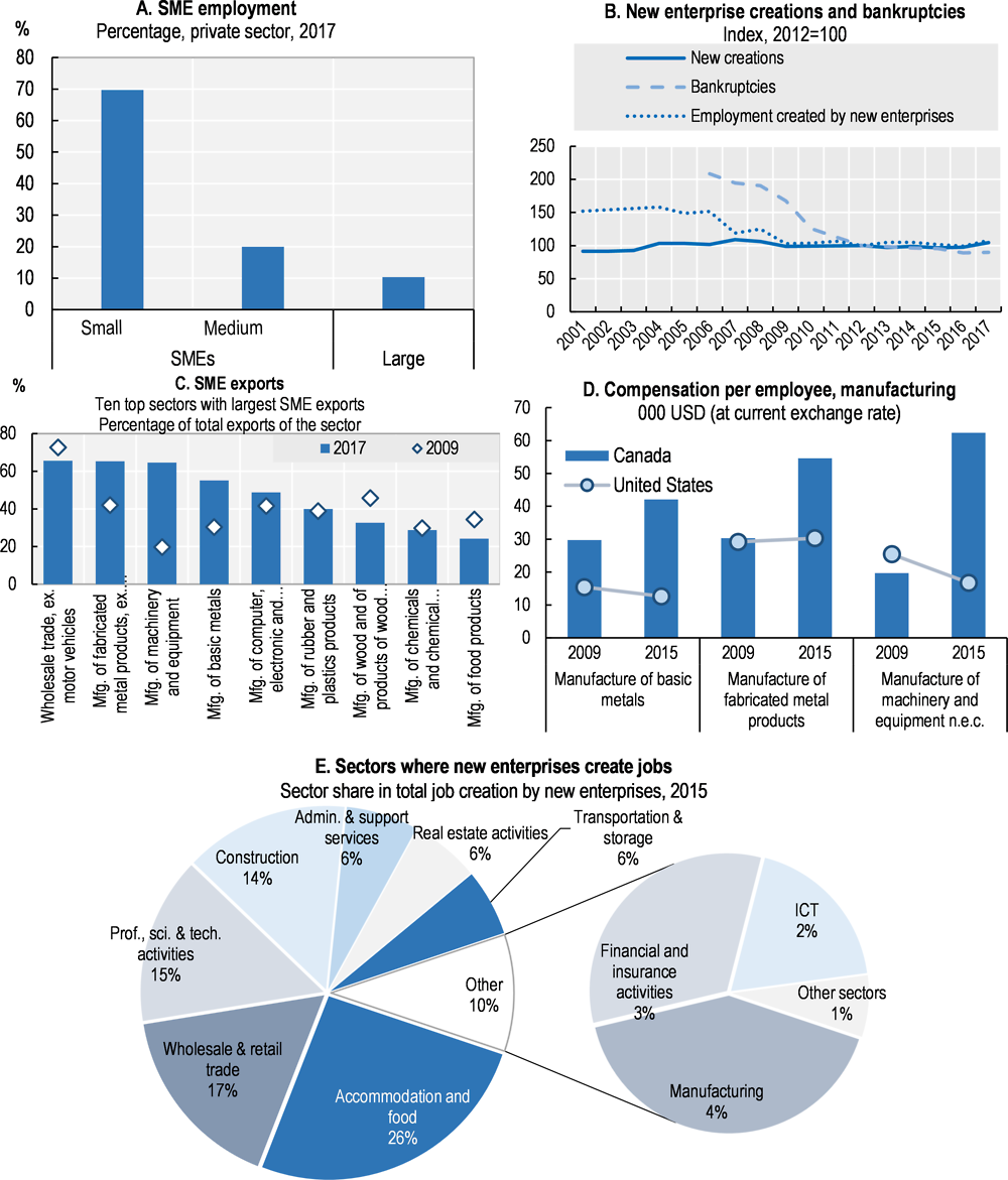 Figure 12.1. Structure and performance of the SME sector in Canada