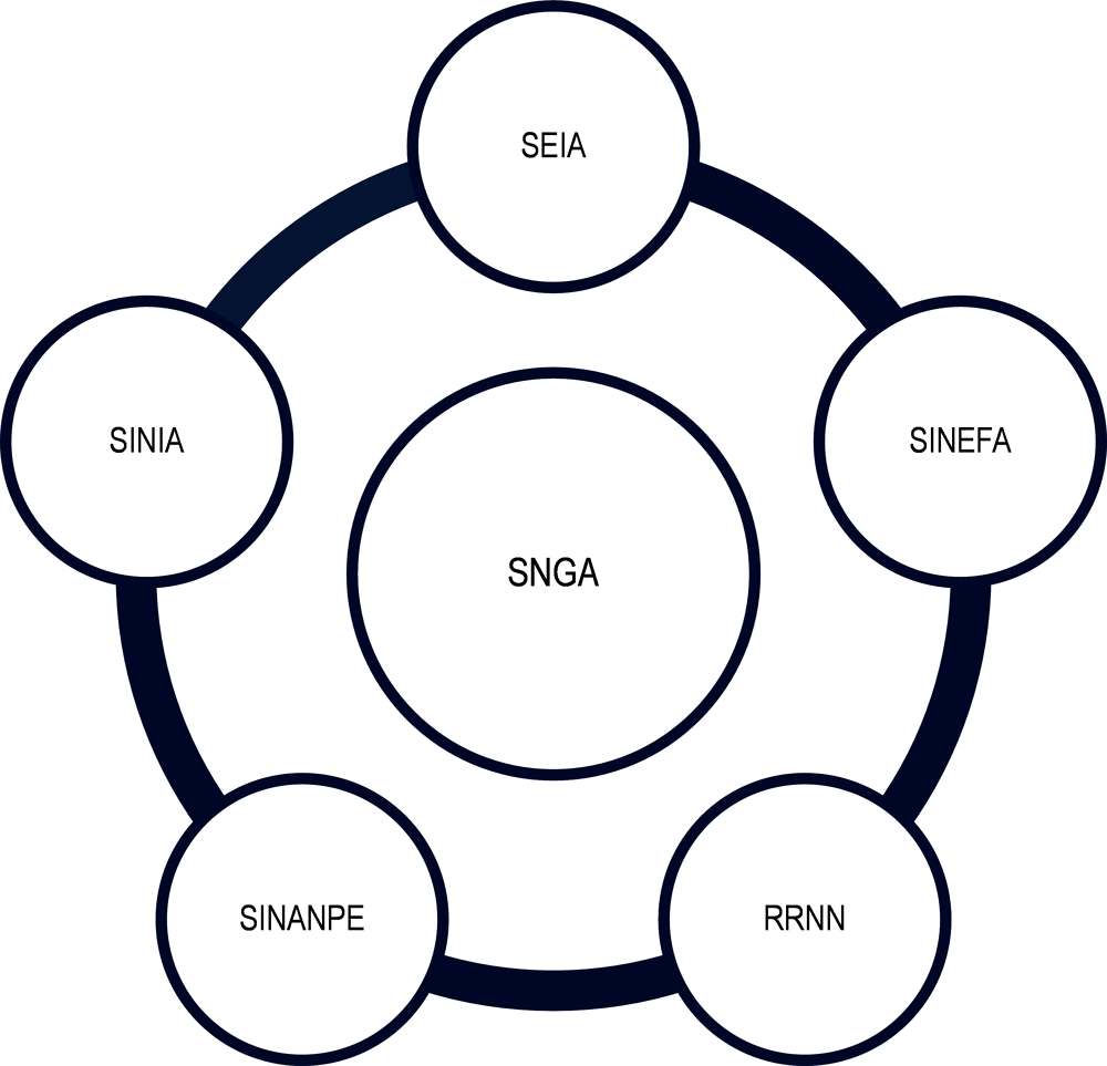 Figure 1.2. SGNA and the articulation with other relevant systems