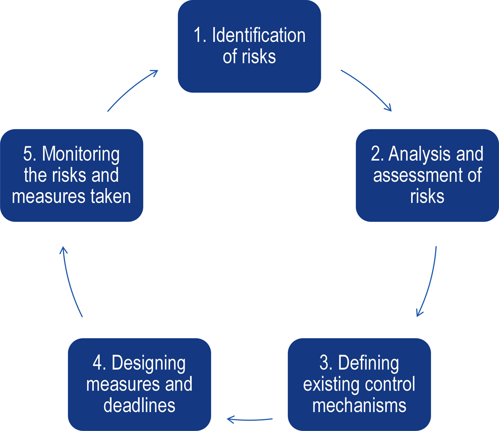 Figure ‎10.1. The risk assessment process in the Slovak Republic
