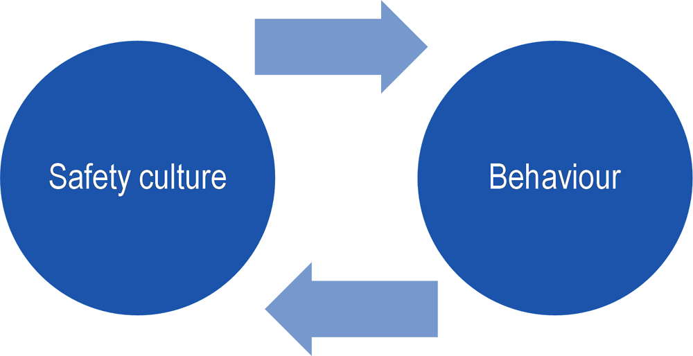 Figure 1.1. Theoretical interaction of behaviour and safety culture